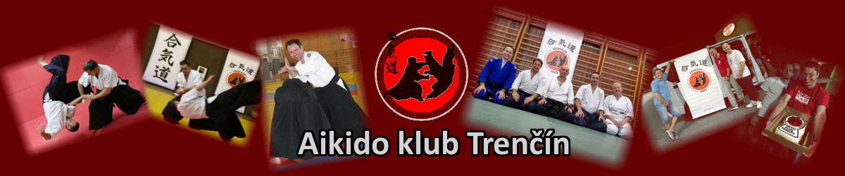 cropped-Aikidotn_banner-1.png